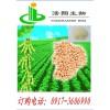 大豆蛋白粉(宝鸡 haoxiangbio)