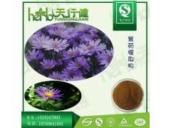 紫苑提取物10:1 返魂草提取物 青苑提取物 紫苑皂甙 喷雾干燥 规格可定制 1KG起订