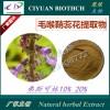 毛喉鞘蕊花提取物10:1 弗斯可林/毛喉素10% 20%