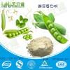 豌豆蛋白粉90% 豌豆分离蛋白 豌豆蛋白 植物蛋白粉 优质营养强化剂 食品级水溶性好 可定制 现货批发 量大从优价格