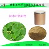 辣木叶提取物10:1 益生祥源头厂家供应辣木叶粉 现货包邮