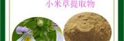 小米草黄酮10% 益生祥包邮 食品级 小米草提取物