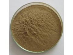 银杏叶提取物10:1 植物浓缩粉 100g/袋现货量大优惠