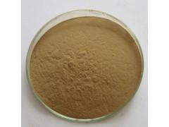 知母提取物10:1 植物浓缩粉 100g/袋现货量大优惠