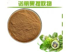 诺丽果酵素 诺丽果酵素粉 1公斤起订 欢迎采购