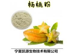 杨桃提取物 杨桃速溶粉 杨桃浓缩汁 1公斤起订