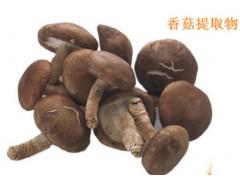 热销香菇膳食纤维粉香菇纤维粉包邮