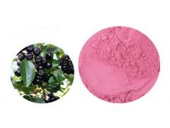 马奇果提取物马基莓速溶粉原粉马奇果浓缩汁1公斤起订