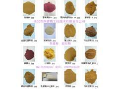 供应朝鲜蓟提取物 棕黄色粉末