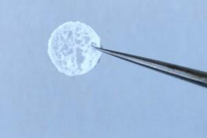 科学家将姜黄提取物添加到用于愈合伤口的泡沫中