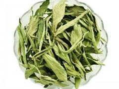 甜叶菊生长对环境条件的要求及栽培管理技术