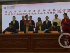 """重庆创新扶贫模式:药材种植有人""""兜底"""",小小黄精一年能给村里挣400万"""