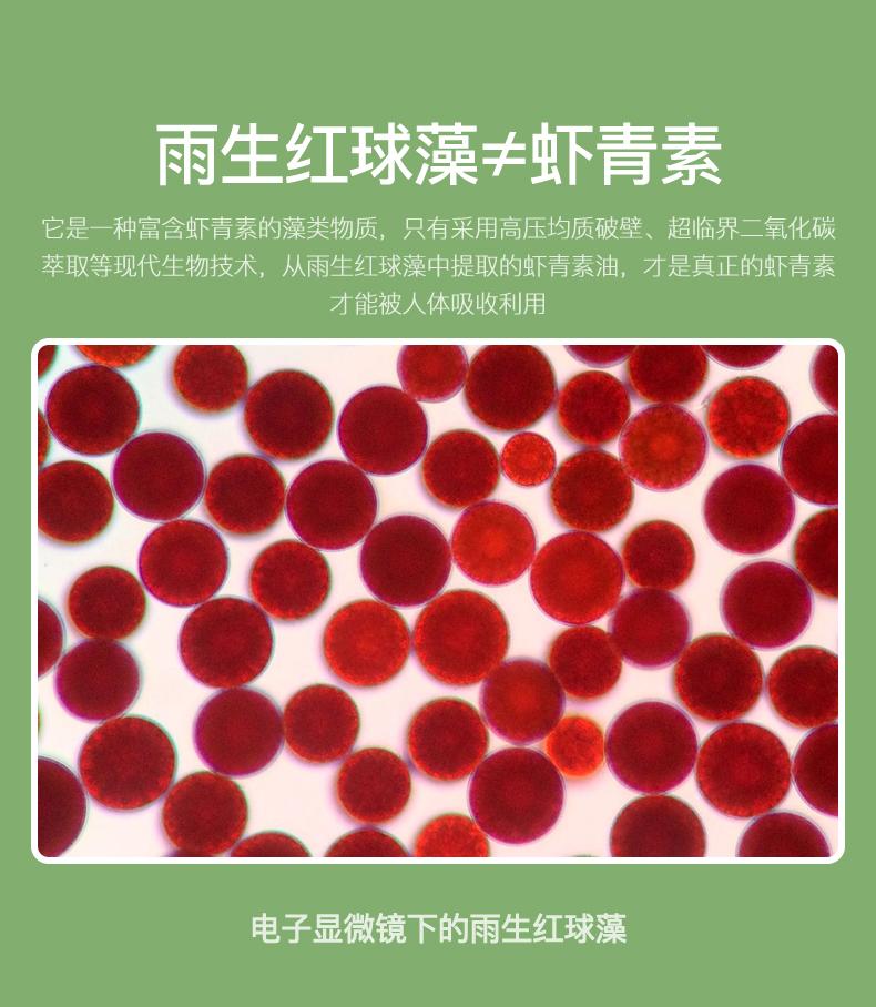 虾青素7_04