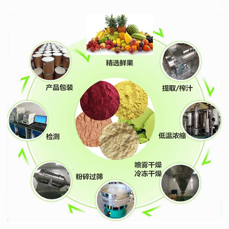 水果粉的生产工艺