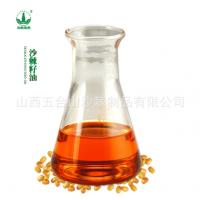 超临界萃取沙棘籽油,沙棘籽提取物,食品化妆品原料
