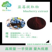 现货供应高品质 蓝莓提取物