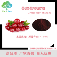 现货供应高品质 蔓越莓提取物