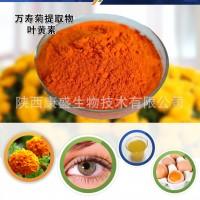 厂家直销叶黄素 叶黄素酯 玉米黄质 免费样品 第三方检测